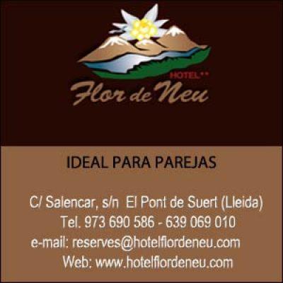 Hotel FlordeNeu Pont de Suert