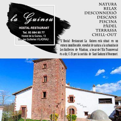 Viladrau Hostal La Guineu