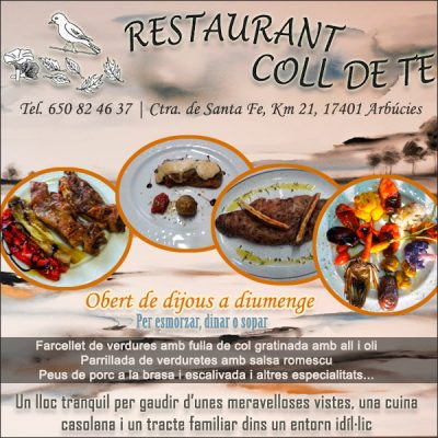 Arbúcies Restaurant Coll de Te