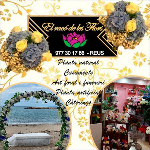 Reus Floristeria el Racó de les Flors