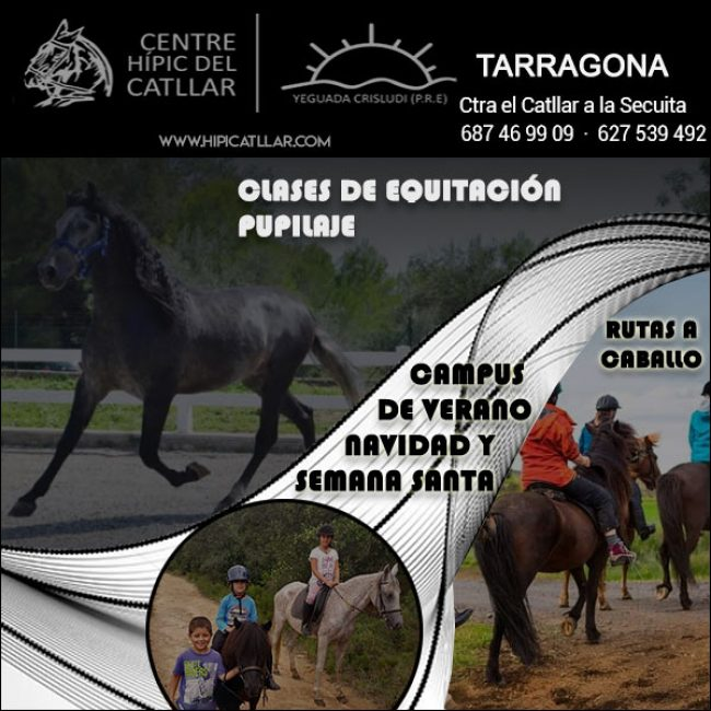 Tarragona Equitación Pupilaje Hípica Catllar: