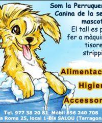 Salou Perruqueria Canina Rasta