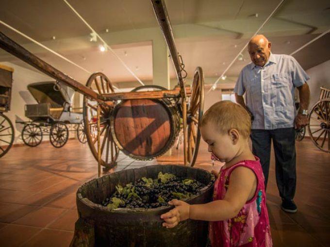 museu vida rural 8